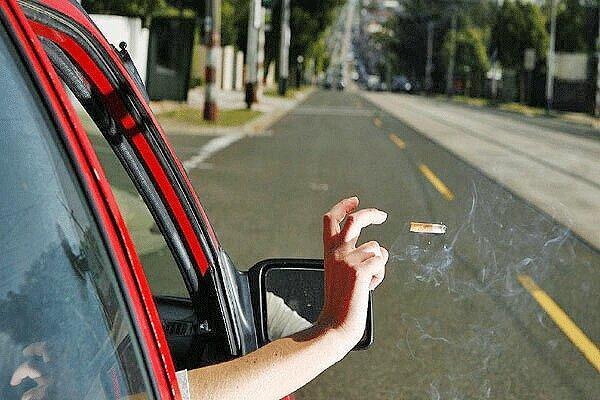 دلایل بیرون انداختن زباله از ماشین و تاثیرات مخرب آن بر محیط